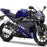 Yamaha YZF R125 MCN 125 Test